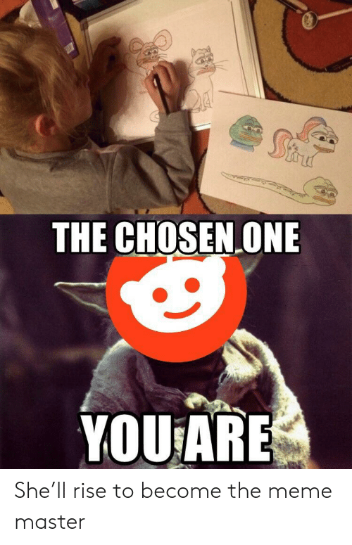 the chosen one: THE CHOSEN ONE  YOU ARE She'll rise to become the meme master