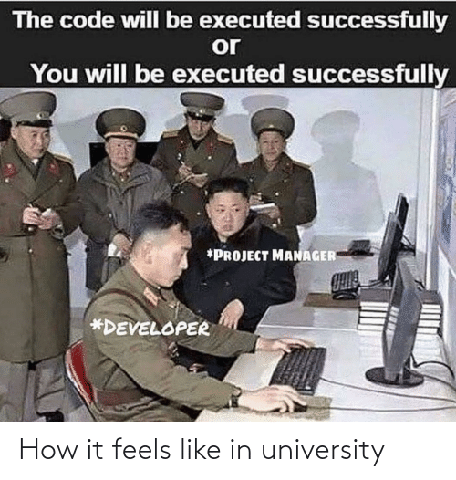 How, Code, and Project: The code will be executed successfully  or  You will be executed successfully  *PROJECT MANAGER  *DEVELOPER How it feels like in university