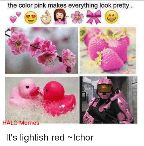 Halo Meme: the color pink makes everything look pretty  HALO Memes It's lightish red ~Ichor