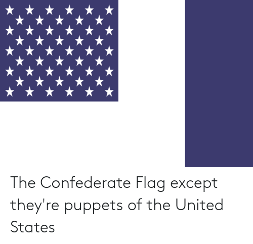 Confederate: The Confederate Flag except they're puppets of the United States