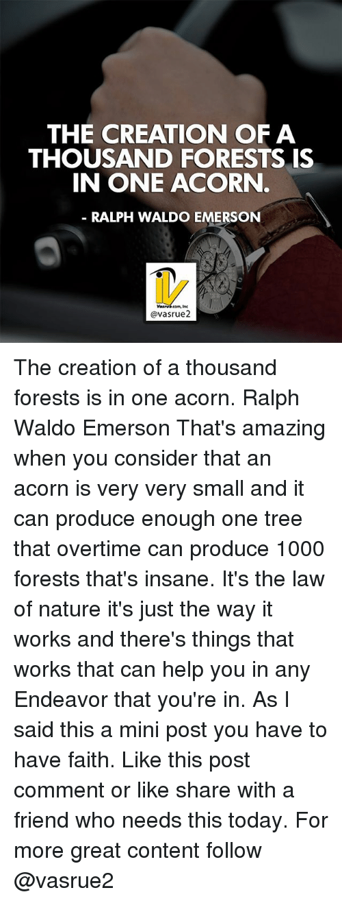 creationism: THE CREATION OF A  THOUSAND FORESTS IS  IN ONE ACORN  RALPH WALDO EMERSON  @vasrue2 The creation of a thousand forests is in one acorn. Ralph Waldo Emerson That's amazing when you consider that an acorn is very very small and it can produce enough one tree that overtime can produce 1000 forests that's insane. It's the law of nature it's just the way it works and there's things that works that can help you in any Endeavor that you're in. As I said this a mini post you have to have faith. Like this post comment or like share with a friend who needs this today. For more great content follow @vasrue2