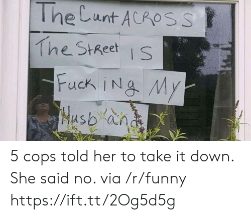 take-it-down: The Cunt ACROSS  The StReets 5 cops told her to take it down. She said no. via /r/funny https://ift.tt/2Og5d5g