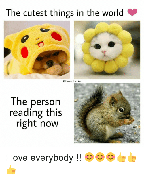 this-right-now: The cutest things in the world  @KaranThakkar  The person  reading this  right now I love everybody!!! 😊😊😊👍👍👍
