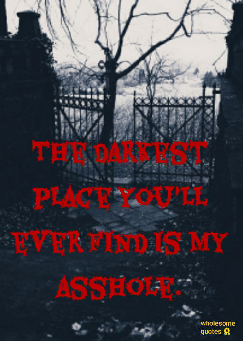 Quotes, Wholesome, and Asshole: THE DARKEST  PLACE YOU'LL  EVER FIND IS MY  ASSHOLE  wholesome  quotes