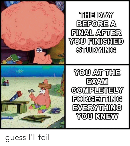 Fail, Guess, and Dank Memes: THE DAY  BEFORE A  FINAL AFTER  YOU FINISHED  STUDYING  YOU AT THE  EXAM  COMPLETELY  FORGETTING  EVERYTHING  YOU KNEW guess I'll fail