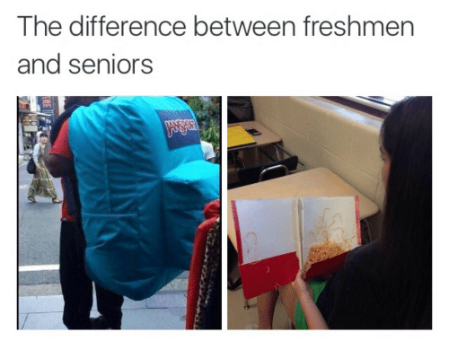 seniors: The difference between freshmern  and seniors