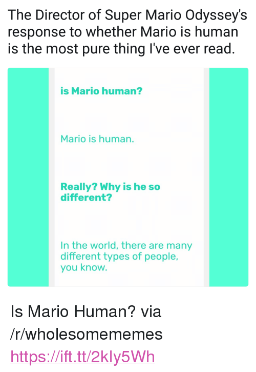 """Super Mario, Mario, and World: The Director of Super Mario Odyssey's  response to whether Mario is human  is the most pure thing I've ever read.  is Mario human?  Mario is human.  Really? Why is he so  different?  In the world, there are many  different types of people,  you know <p>Is Mario Human? via /r/wholesomememes <a href=""""https://ift.tt/2kIy5Wh"""">https://ift.tt/2kIy5Wh</a></p>"""