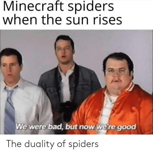 Spiders: The duality of spiders