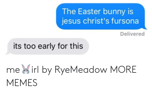 easter bunny: The Easter bunny is  jesus christ's fursona  Delivered  its too early for this me🐰irl by RyeMeadow MORE MEMES