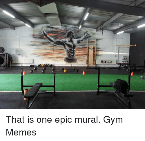 gym memes: THE ELITE That is one epic mural.