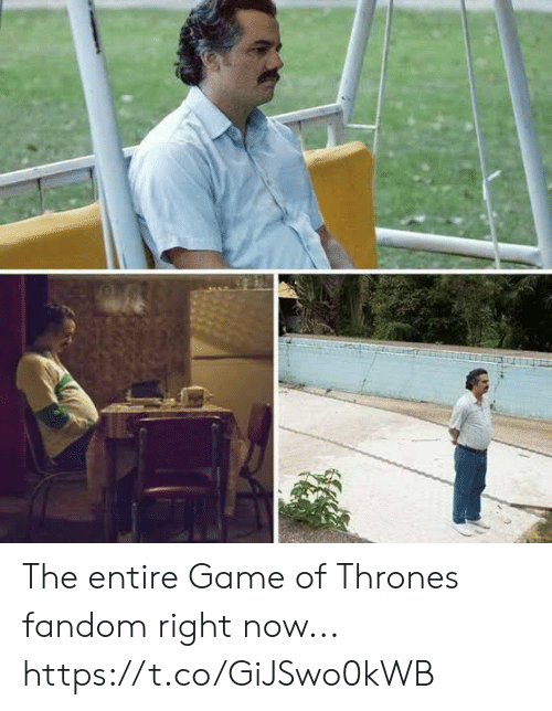 Game of Thrones, Game, and Fandom: The entire Game of Thrones fandom right now... https://t.co/GiJSwo0kWB