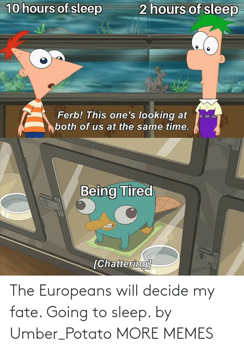Decide: The Europeans will decide my fate. Going to sleep. by Umber_Potato MORE MEMES