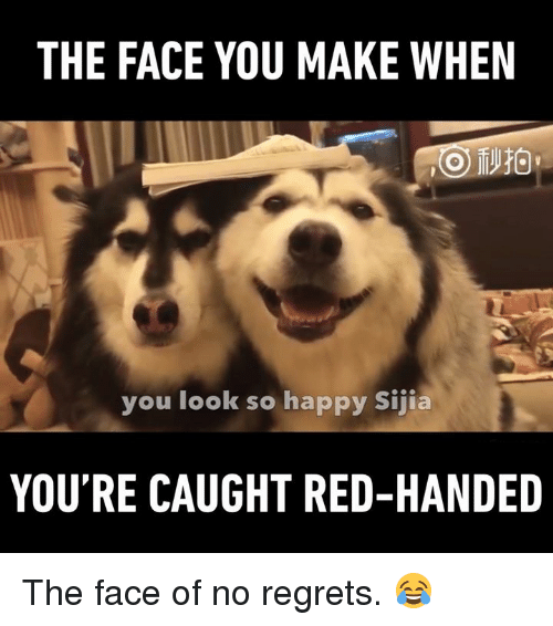 no regret: THE FACE YOU MAKE WHEN  you look so happy sijia  YOU'RE CAUGHT RED-HANDED The face of no regrets. 😂