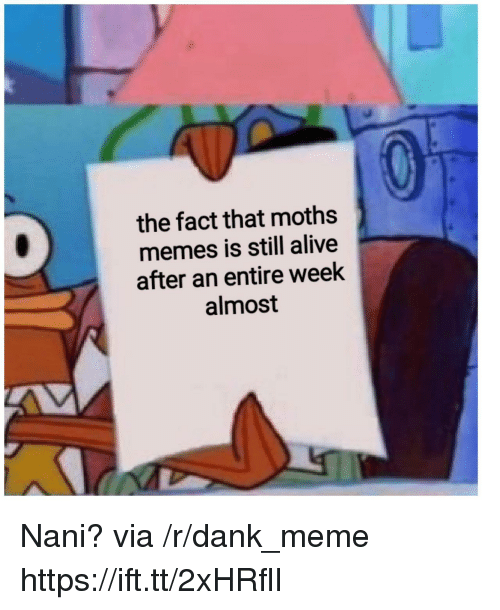 Alive, Dank, and Meme: the fact that moths  memes is still alive  after an entire week  almost Nani? via /r/dank_meme https://ift.tt/2xHRflI