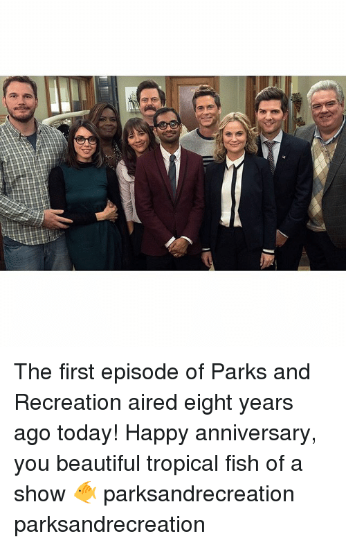 Parks and Recreation: The first episode of Parks and Recreation aired eight years ago today! Happy anniversary, you beautiful tropical fish of a show 🐠 parksandrecreation parksandrecreation