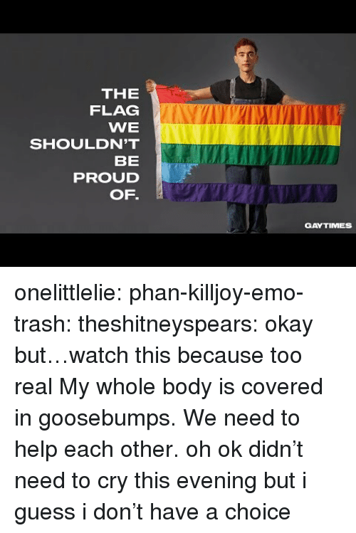 goosebumps: THE  FLAG  WE  SHOULDN'T  BE  PROUD  OF.  GAYTIMES onelittlelie:  phan-killjoy-emo-trash:  theshitneyspears:  okay but…watch this because too real  My whole body is covered in goosebumps. We need to help each other.  oh ok didn't need to cry this evening but i guess i don't have a choice