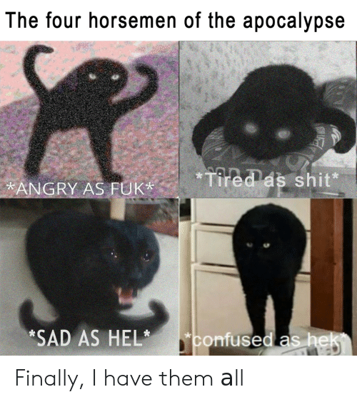 four horsemen: The four horsemen of the apocalypse  ANGRY AS FUKTees shit  *SAD AS HELconfused as hek Finally, I have them аll