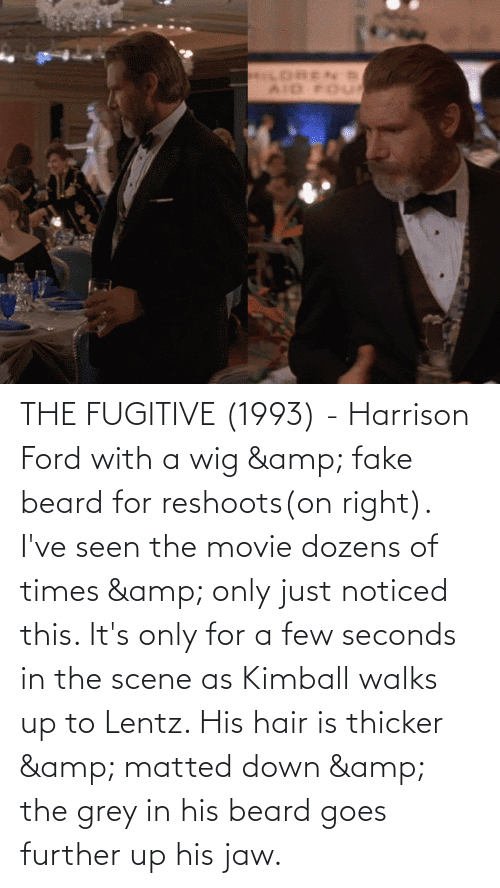 Ford: THE FUGITIVE (1993) - Harrison Ford with a wig & fake beard for reshoots(on right). I've seen the movie dozens of times & only just noticed this. It's only for a few seconds in the scene as Kimball walks up to Lentz. His hair is thicker & matted down & the grey in his beard goes further up his jaw.