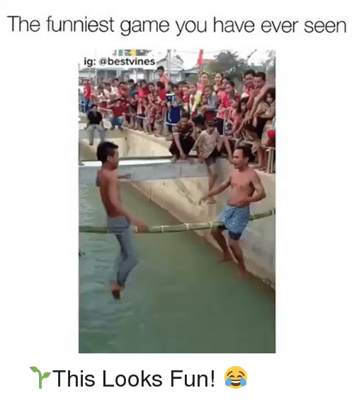 Looks Fun: The funniest game you have ever seen  ig: a  bestvines ⠀ 🌱This Looks Fun! 😂