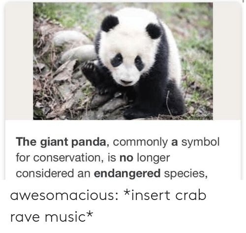 giant panda: The giant panda, commonly a symbol  for conservation, is no longer  considered an endangered species, awesomacious:  *insert crab rave music*
