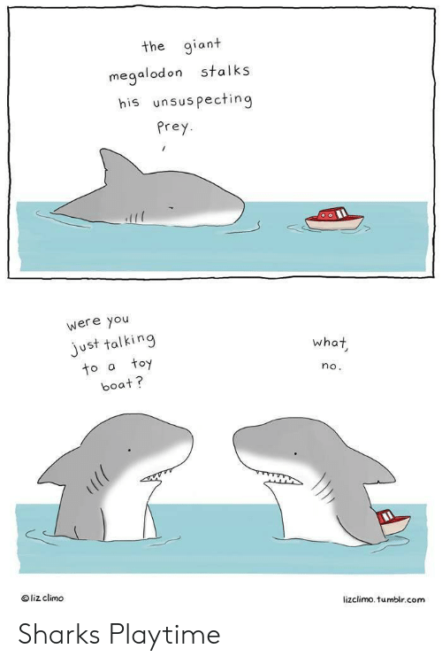 Playtime: the giant  stalks  megalodon  his unsuspecting  Prey  were you  just talking  toy  what  to a  no.  boat?  liz climo  lizclimo. tumblr.com Sharks Playtime