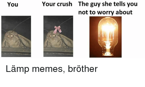 the guy she tells you not to worry about: The guy she tells you  not to worry about  You  Your crush Lämp memes, bröther