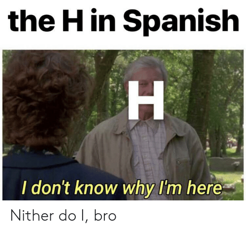i dont know why: the H in Spanish  H  I don't know why I'm here Nither do I, bro