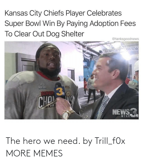 hero: The hero we need. by Trill_f0x MORE MEMES