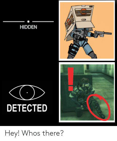Hidden, The Hidden, and Who: THE  HIDDEN  DETECTED Hey! Whos there?