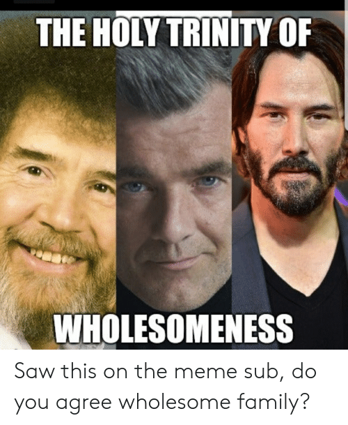 Wholesome Family: THE HOLY TRINITY OF  WHOLESOMENESS Saw this on the meme sub, do you agree wholesome family?