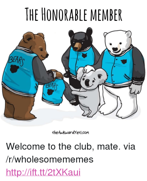 """Welcome To The Club: THE HONORABLE MEMBER  BEAR  EAR  theAwkwardYeti.com <p>Welcome to the club, mate. via /r/wholesomememes <a href=""""http://ift.tt/2tXKaui"""">http://ift.tt/2tXKaui</a></p>"""