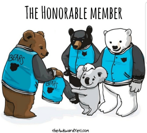 Bears: THE HONORABLE MEMBER  BEARS  BEARS  theAwkwardyeti.com
