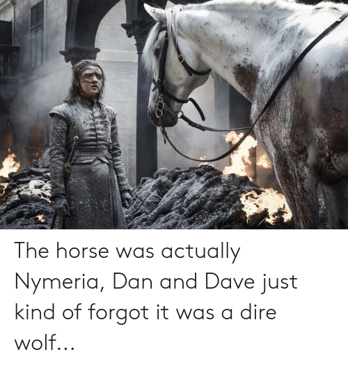 dire wolf: The horse was actually Nymeria, Dan and Dave just kind of forgot it was a dire wolf...