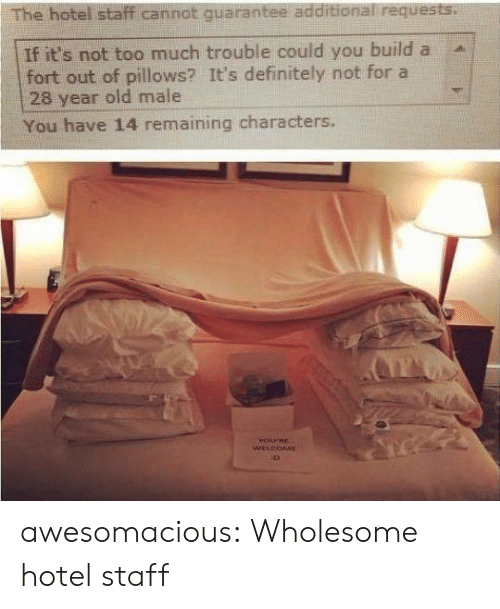Hotel: The hotel staff cannot quarantee additional requests.  If it's not too much trouble could you build a  fort out of pillows? It's definitely not for a  28 year old male  You have 14 remaining characters.  YOPRE  WELCOME awesomacious:  Wholesome hotel staff