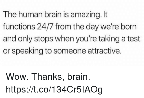Wow Thanks: The human brain is amazing. It  functions 24/7 from the day we're born  and only stops when you're taking a test  or speaking to someone attractive. Wow. Thanks, brain. https://t.co/134Cr5IAOg