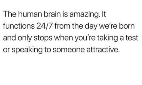 Brain, Test, and Amazing: The human brain is amazing. It  functions 24/7 from the day we're born  and only stops when you're taking a test  or speaking to someone attractive.