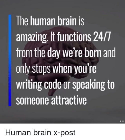 Brain, Amazing, and Human: The human brain is  amazing, It functions 24/T  from the day we're born and  only stops when you're  writing code or speaking to  someone attractive Human brain x-post