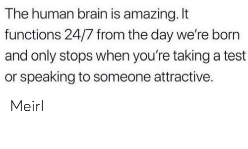 Brain, Test, and Amazing: The human brain is amazing.t  functions 24/7 from the day we're born  and only stops when you're taking a test  or speaking to someone attractive. Meirl