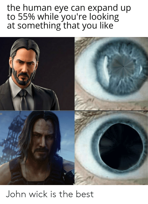 human eye: the human eye can expand up  to 55% while you're looking  at something that you like  03 John wick is the best