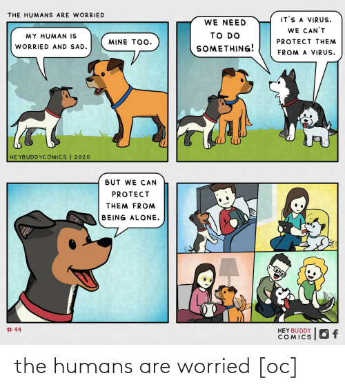 worried: the humans are worried [oc]