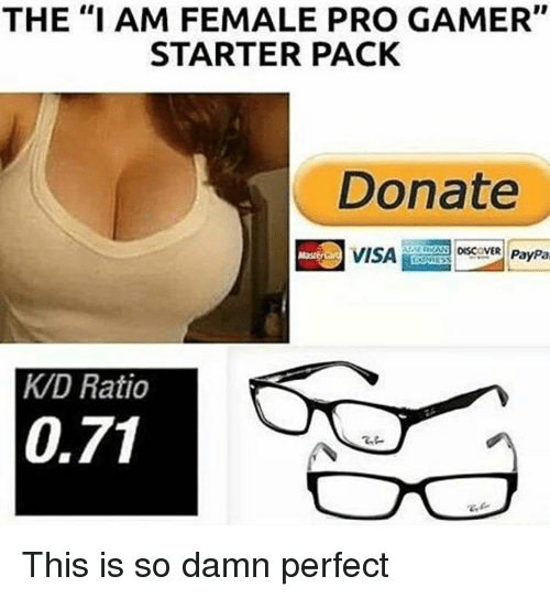 """pro gamers: THE """"I AM FEMALE PRO GAMER""""  STARTER PACK  Donate  DISCOVER PayPa  VISA  KAD Ratio  0,71 This is so damn perfect"""