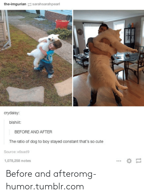 The Ratio: the-imgurian sarahsarahpearl  crydaisy:  blshiit:  BEFORE AND AFTER  The ratio of dog to boy stayed constant that's so cute  Source: x6sad9  1,078,258 notes Before and afteromg-humor.tumblr.com