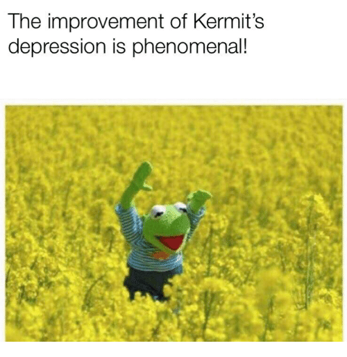 Phenomenal, Depression, and Improvement: The improvement of Kermit's  depression is phenomenal!