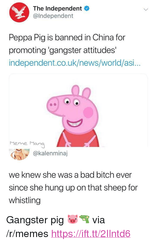 "Bad, Bad Bitch, and Bitch: The Independent  @lndependent  Peppa Pig is banned in China for  promoting 'gangster attitudes'  independent.co.uk/news/world/asi...  Meme Man  @kalenminaj  we knew she was a bad bitch ever  since she hung up on that sheep for  whistling <p>Gangster pig 🐷🔫 via /r/memes <a href=""https://ift.tt/2Ilntd6"">https://ift.tt/2Ilntd6</a></p>"