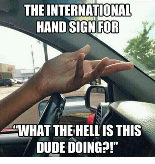 Hand Sign: THE INTERNATIONAL  HAND SIGN FOR  WHAT THE HELL IS THIS  DUDE DOING?!'