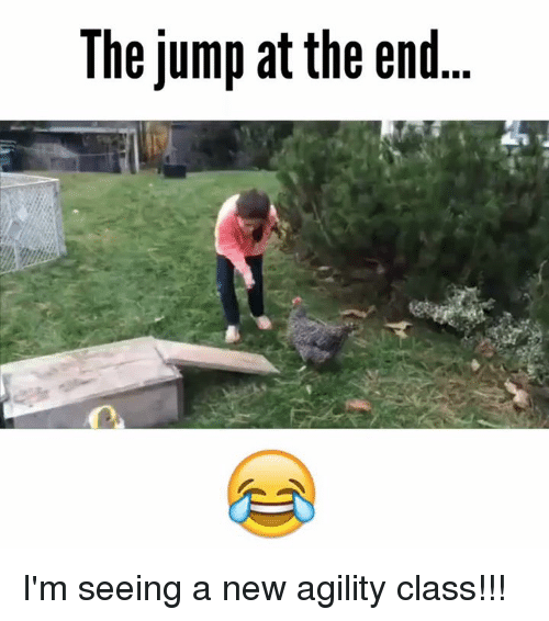 Memes, 🤖, and Agile: The jump at the end I'm seeing a new agility class!!!
