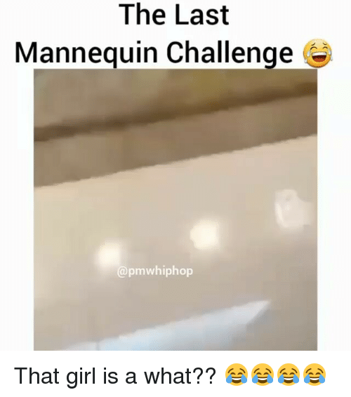 Mannequin Challenges: The Last  Mannequin Challenge  apmwhiphop That girl is a what?? 😂😂😂😂