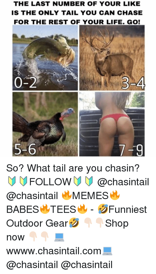 Life, Memes, and Chase: THE LAST NUMBER OF YOUR LIKE  IS THE ONLY TAIL YOU CAN CHASE  FOR THE REST OF YOUR LIFE. GO!  0-2  5-6 So? What tail are you chasin? 🔰🔰FOLLOW🔰🔰 @chasintail @chasintail 🔥MEMES🔥BABES🔥TEES🔥 - 🤣Funniest Outdoor Gear🤣 👇🏻👇🏻Shop now 👇🏻👇🏻 💻wwww.chasintail.com💻 @chasintail @chasintail