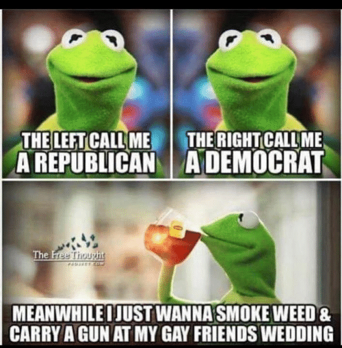 Friends, Funny, and Weed: THE LEFT CALL ME  A REPUBLICANADEMOCRAT  THE RIGHT CALL ME  The Free Thought  AEETCO  MEANWHILEIJUST WANNA SMOKE WEED&  CARRY A GUN AT MY GAY FRIENDS WEDDING