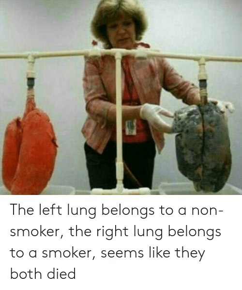 Lunges: The left lung belongs to a non-smoker, the right lung belongs to a smoker, seems like they both died